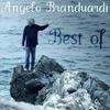 Couverture de l'album Best of Angelo Branduardi