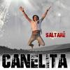 Cover of the album Saltaré