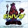 Couverture de l'album Shiva