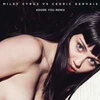 Couverture du titre Adore You (Remix) - Single