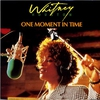 Couverture du titre One Moment In Time (1988)
