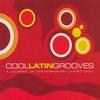 Couverture de l'album 20 Cool Latin Grooves