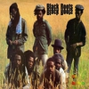 Cover of the album Black Roots