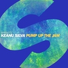 Cover of the track Pump Up the Jam
