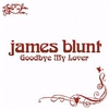 Couverture du titre Goodbye My Lover (2005)