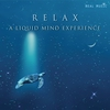 Cover of the album Relax: A Liquid Mind Experience