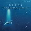 Couverture de l'album Relax: A Liquid Mind Experience