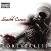 Couverture de l'album Foreverless
