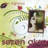 Couverture de l'album Sen Ağlama