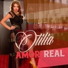 Cover of the track Amor Real (Radio Edit)