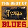 Couverture de l'album The Best Of Texas Blues