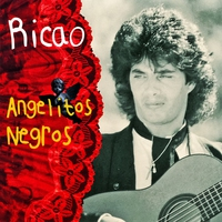 Cover of the track Angelitos Negros
