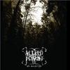 Couverture de l'album These Mournful Days