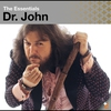 Couverture de l'album The Essentials: Dr. John