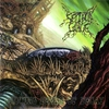 Cover of the album Growing Seeds of Decay