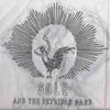 Cover of the album Sole & The Skyrider Band: Remix Album