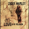 Cover of the album Love Is My Religion (Deluxe Version)