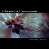 Couverture de l'album Oxycanta: Winter Blooms
