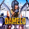 Cover of the track Damelo