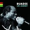 Couverture de l'album Life Journey