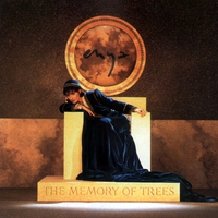 Cover of the track The Memory of Trees