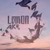 Couverture de l'album Ake - Single