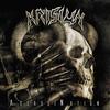 Cover of the album AssassiNation
