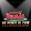 Cover of the track Me Pones al Cien