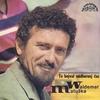Couverture de l'album To Bejval Nádhernej Čas (Nahrávky Z Let 1962 - 1978)