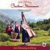 Couverture de l'album Am Almweg entlang - Die Saitenstimmen