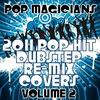Couverture de l'album 2011 Pop Hit Dubstep Re-Mix Covers Vol. 2