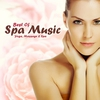 Cover of the album Best Of Spa Music