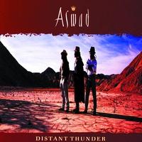 Couverture du titre Distant Thunder