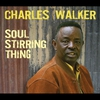 Cover of the album Soul Stirring Thing