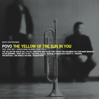 Cover of the track The Yellow of the Sun in You