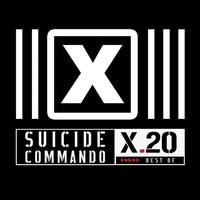 Cover of the track X.20 (Best Of)