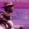 Cover of the album Blues From the Delta