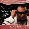 Cover of the track Donde Estan Esos Amigos
