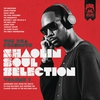 Cover of the album The RZA Presents Shaolin Soul Selection: Vol. 1