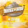 Cover of the album Arena de Ouro 2014