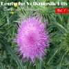 Couverture de l'album Deutsche Volksmusik Hits - Duette der Volksmusik, Vol. 1