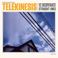 Cover of the track 12 Desperate Straight Lines