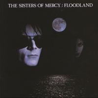 Couverture du titre Floodland (Deluxe Version)