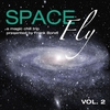 Cover of the album Space Fly, Vol. 2 - A Magic Chill Trip Presented By Frank Borell