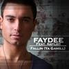 Couverture de l'album Fallin (Ya Gamill) - Single