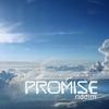 Cover of the album The Promise Riddim
