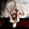 Couverture de l'album Of Fracture and Failure