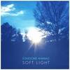 Couverture de l'album Soft Light - EP