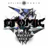 Cover of the album Ruckus / Check It - Single