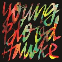 Couverture du titre Youngblood Hawke - EP